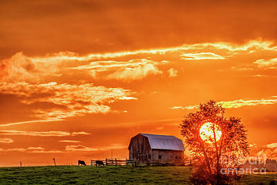 Photograph - Sunset And Barn by Thomas R Fletcher