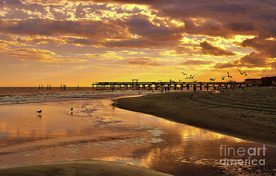 Photograph - Sunset And Gulls by Kathy Baccari