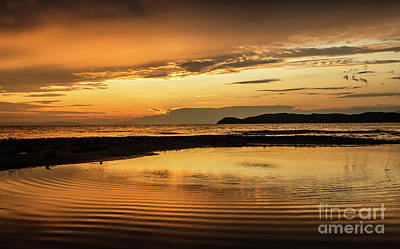 Photograph - Sunset And Reflection by Daliana Pacuraru