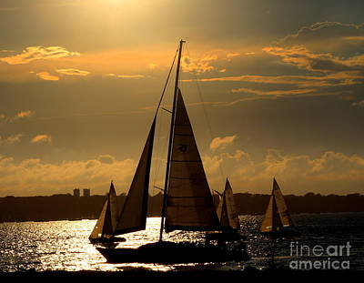 Photograph - Sunset And Sail by Lennie Malvone