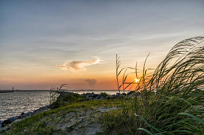 Photograph - Sunset And Sea Oats by Gregg Southard