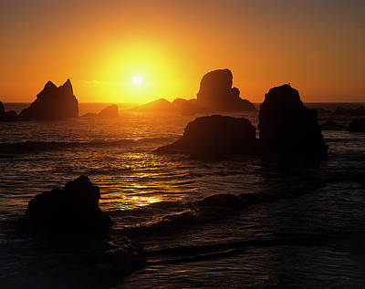 Photograph - Sunset And Sea Stacks Ecola by Robert Potts