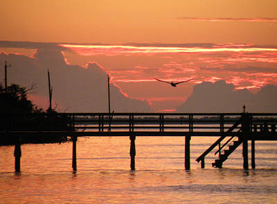 Print featuring the photograph Sunset And The Fishing Dock by Rosalie Scanlon