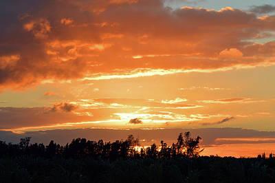 Tree Photograph - Sunset Art by Ken Figurski