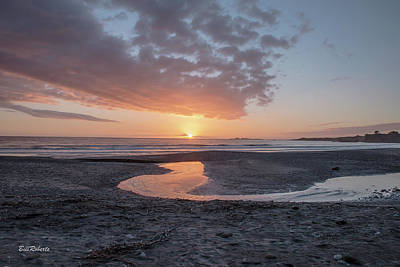 Ano Nuevo Photograph - Sunset At Ano Nuevo by Bill Roberts