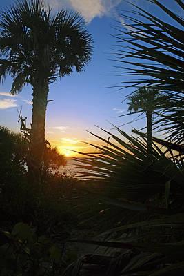 Sunset At Bearefoot Beach In Naples Art Print