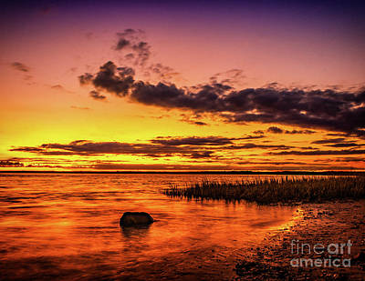 Photograph - Sunset At Corson's Inlet by Nick Zelinsky