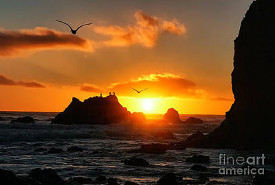 Photograph - Sunset At El Matador State Beach by Traci Law