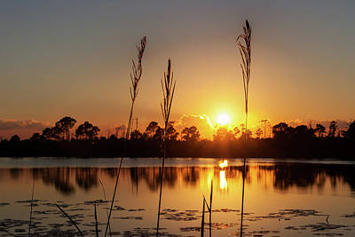 Art Print featuring the photograph Sunset At Gator Hole 3 by Arthur Dodd