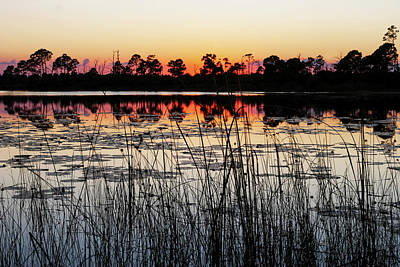 Art Print featuring the photograph Sunset At Gator Hole by Arthur Dodd