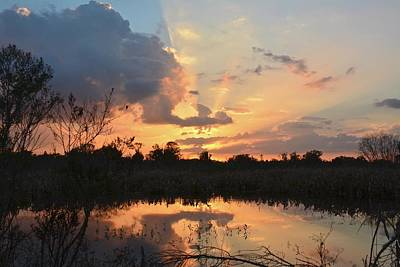 Photograph - Sunset At Heron Hideout by Carol Bradley