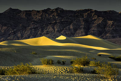 Photograph - Sunset At Mesquite Flat by Fran Gallogly