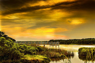 Photograph - Sunset At Mullet Pond by Terry Shoemaker