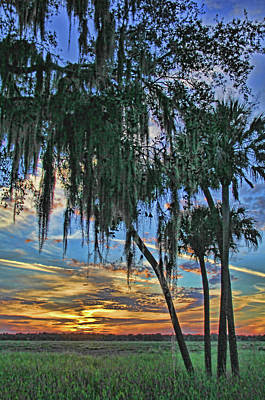 Photograph - Sunset At Myakka 2 By H H Photography Of Florida by HH Photography of Florida