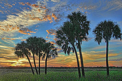 Photograph - Sunset At Myakka By H H Photography Of Florida by HH Photography of Florida