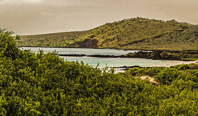 Photograph - Sunset At Post Office Bay Floreana by Harry Strharsky