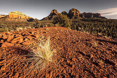 Photograph - Sunset At Red Rocks by Alexey Stiop