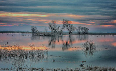 Photograph - Sunset At San Luis   by Patricia Dennis