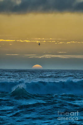 Photograph - Sunset At Sea by Billie-Jo Miller