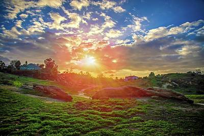 Photograph - Sunset At Sycamore Park by Lynn Bauer
