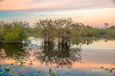 Target Project 62 Abstract - Sunset at the Everglades National Park III by Amanda Mohler