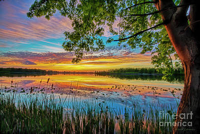Photograph - Sunset At The Lake With Tree by David Arment
