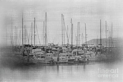 Photograph - Sunset At The Marina Bw by Teresa Wilson