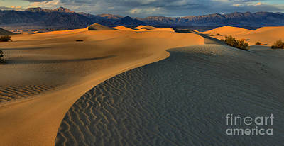 Photograph - Sunset At The Mesquite Sand Dunes by Adam Jewell