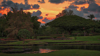 Photograph - Sunset At The Monkey Pod Tree by Susan Rissi Tregoning