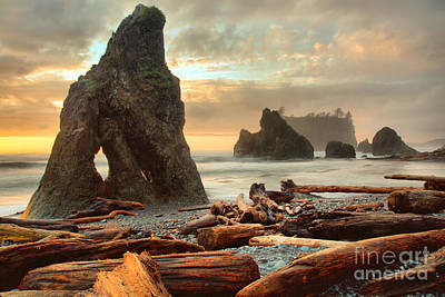 Photograph - Sunset At The Ruby Beach Arch by Adam Jewell