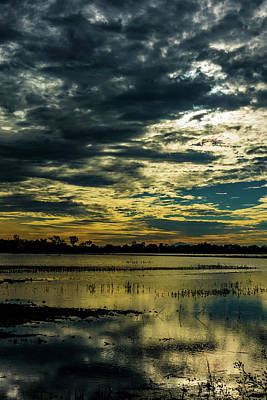 Sunset At The Wetlands Art Print