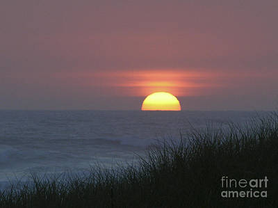 Photograph - Sunset At Waldport by Martha Johnson
