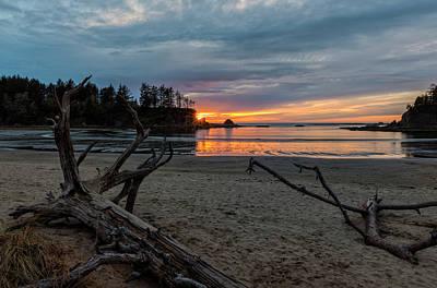 Photograph - Sunset Bay Driftwood by Loree Johnson