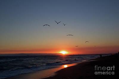 Photograph - Sunset Beach Ca by Afrodita Ellerman