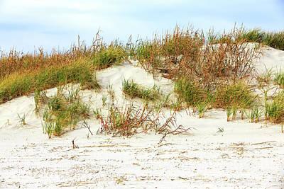 Photograph - Sunset Beach Dune Study by John Rizzuto