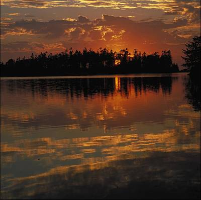 Sunset Behind The Trees On A Lake Art Print