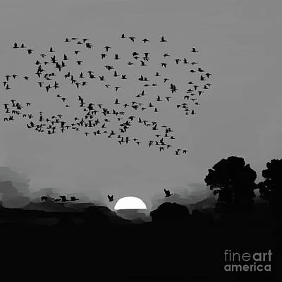 Sunset Birds Flying 02 Original