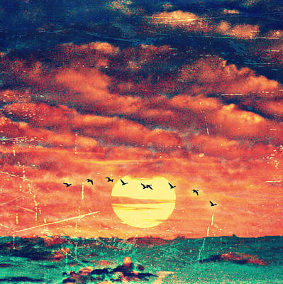 Sunset Birds V2 Art Print