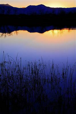 Photograph - Sunset Blue, Walden Ponds Wildlife Habitat by Flying Z Photography by Zayne Diamond