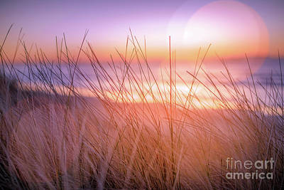 Sunset Bokeh Art Print by Inger Vaa Eriksen