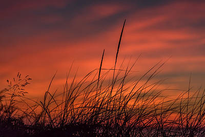 Photograph - Sunset Breeze Lavallette Nj by Terry DeLuco