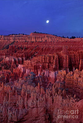 Photograph - Sunset Bryce Canyon National Park Utah by Dave Welling