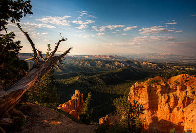 Photograph - Sunset Bryce by Rebecca Hiatt
