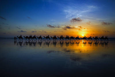 Camel Wall Art - Photograph - Sunset Camel Ride by Louise Wolbers