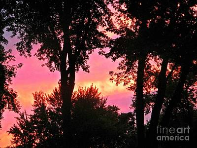 Photograph - Sunset by Catherine Hill