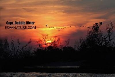 Photograph - Sunset Chincoteague 6761 by Captain Debbie Ritter