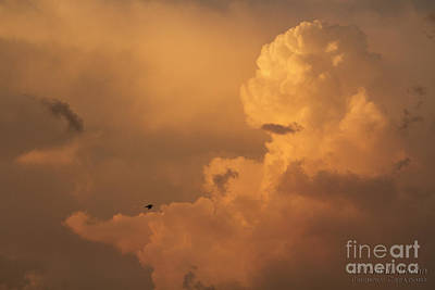 Photograph - Sunset Clouds 01 by Ronald Hoehn
