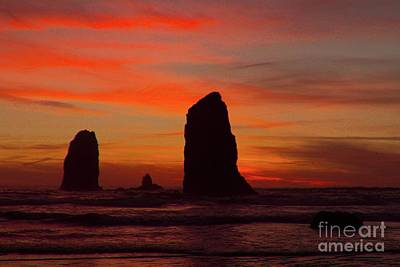 Photograph - Sunset Coast by Lisa Conner