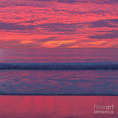 Photograph - Sunset Colors by Ana V Ramirez