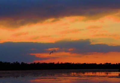 Photograph - Sunset Colors by Rosalie Scanlon
